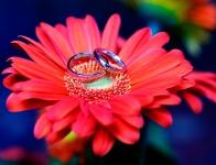 Beds-Herts-Northants-Milton-Keynes-wedding-photography-bucks-wedding-photographer-ROBYN&STUART 79a