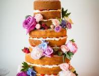Dodford-Manor-wedding-photographer-E&A-367